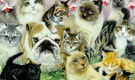 Kisah Kucing Dalam Peradaban Islam Republika Online