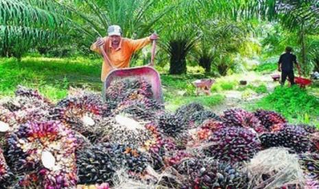 PNG dan Fiji Tertarik Mikropropagasi Perkebunan Indonesia