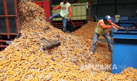 Kementan: Impor Jagung Antisipasi Harga Tinggi