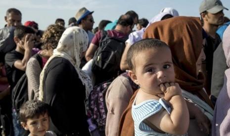 1.672 Imigran Ilegal Tercatat Di Sulawesi Selatan