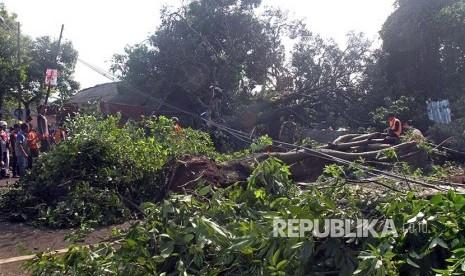 Pohon Tumbang Sempat Hambat Jalur Tasik-Bandung