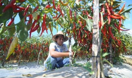 Dekan UGM: Petani di Indonesia Layak Disebut Pahlawan