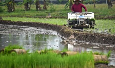 Petani Tasikmalaya Terima Bantuan 40 Ton Benih Sumber Padi