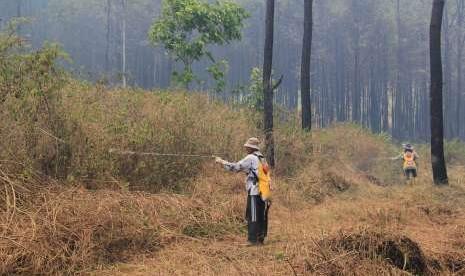 Kebakaran Hutan di Gunung Ciremai Akhirnya Padam