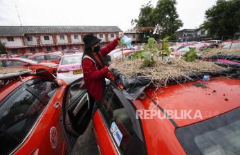 Ada Taman Kecil di Atas Taksi Thailand