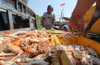 Pemprov Lampung Mulai Bentuk Wilayah Konservasi Rajungan