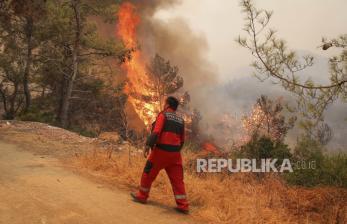 Erdogan: Kebakaran Hutan Jadi Ancaman Global Seperti Covid