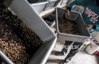 Limbah Makanan Jawa Timur Capai 7,48 Juta Ton per Tahun