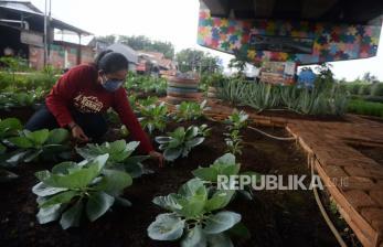 Peneliti: Agrobisnis Usaha Menjanjikan pada Masa Pandemi