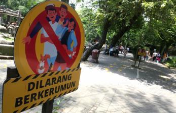 Okupansi Hotel Yogyakarta Capai 95 Persen