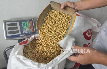 Harga Jual Kedelai Impor di Kudus Tembus Rp 10 Ribu/kg