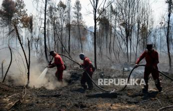 In Picture: Kebakaran di Kawasan Suaka Margasatwa Giam Siak Kecil