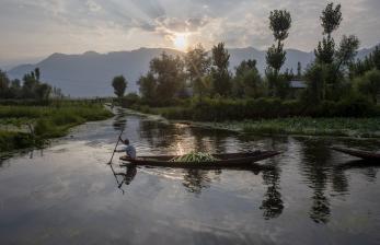 Ekosistem Rawa Mesopotamia Semakin Terancam