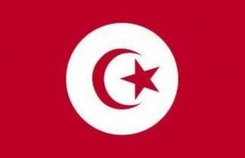Parlemen Tunisia Setuju Perombakan Kabinet