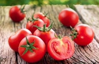 Alasan Ottoman Pernah Larang Makan Tomat Ratusan Tahun