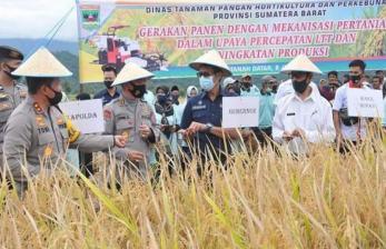 Panen di Sungayang, Gubernur Irwan: Pertanian Jadi Prioritas