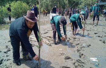 Cegah Abrasi, Dompet Dhuafa Volunteer Lakukan Tanam Pohon