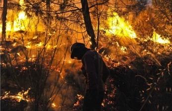 Kebakaran Hutan Hebat di Turki, Empat Orang Dilaporkan Tewas