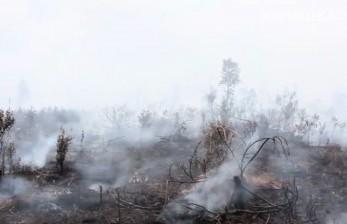 Warga Banten Diminta Waspadai Kebakaran Hutan dan Permukiman