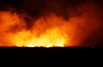 In Picture: Kebakaran Lahan Tebu di Kota Madiun
