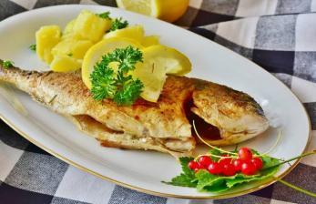 Ketika Kemkominfo Edukasi Generasi Muda Gemar Makan Ikan