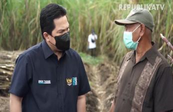 ET Janjikan Bibit Tebu Berkualitas untuk Petani Banyuwangi