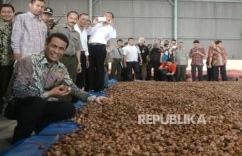 Menteri Pertanian Andi Amran Sulaiman memeriksa bawang merah yang dikeringkan di Gudang Bulog Divre Jakarta, Senin (16/5).  (Republika / Wihdan )