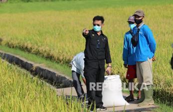 SYL: Jadikan Sektor Pertanian Penyelamat Krisis