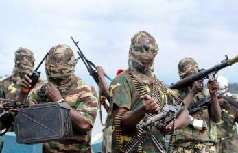Biadab! Boko Haram Bantai 110 Petani