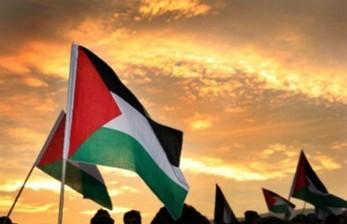 Aksi Unjuk Rasa Bela Palestina di Irlandia Dibatalkan