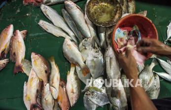 KKP Ingin Pasar Ikan Modern lebih Produktif
