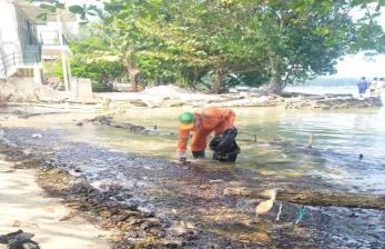 Walhi Desak Pemerintah Tangani Limbah Minyak di Pulau Pari