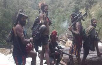 Kapolda Papua: Masih Ada Kesempatan KKB Menyerahkan Diri