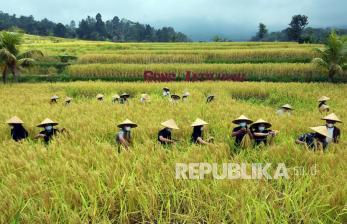 Kementan Tugaskan Setiap Duta Petani Rekrut 200 Petani Baru