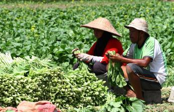 Bupati Malang Dorong Petani Agar Lebih Produktif