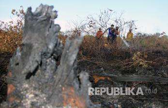 4 Hektare Lahan gambut di Banda Aceh Terbakar