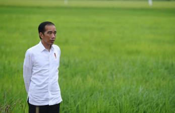 Jokowi Imbau Kepala Daerah Hati-Hati Hadapi Krisis Ekonomi