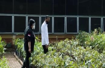 Jokowi Ingin Mengembangkan <em>Green Economy</em>