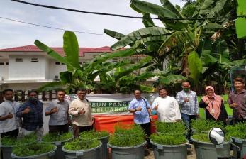 Program Kebun Pangan Dompet Dhuafa Waspada Semakin Diminati