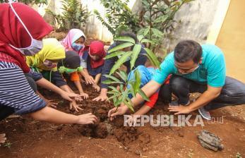 Memulai <em>Urban Farming</em> dengan Menanam di Tanah