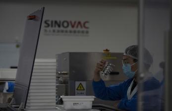 LPPOM MUI dan Sinovac Telah Koordinasi Soal Kehalalan Vaksin