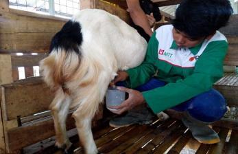Pemkab Gunung Kidul Dukung Pengembangan Agro Wisata