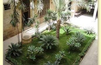 Tanaman Rumput Hias Bakal Dilarang di Las Vegas