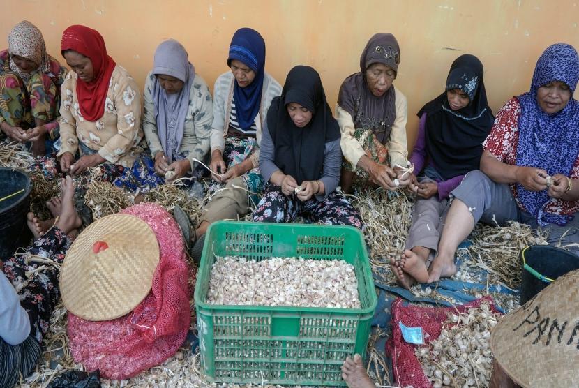 Sejumlah buruh mengupas kulit bawang putih di Bawang, Batang, Jawa Tengah, Kamis (6/9).