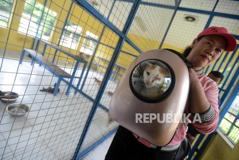 Warga membawa kucing yang telah diadopsi di Puskeswan Ragunan, Jakarta, Selasa (8/1).
