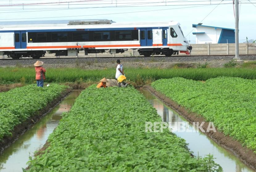 Kereta Api Bandara Melintas menuju Bandara Soekarno Hatta di Tangerang, Banten. ilustrasi