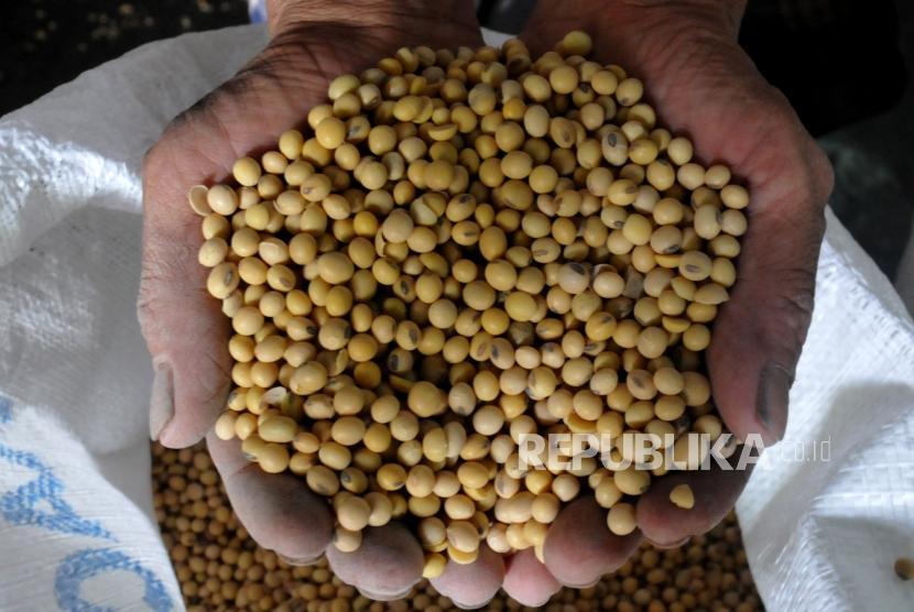 Pekerja memasukan kacang kedelai kedalam karung di sebuah gudang penyimpanan di Jakarta, Ahad (3/12).