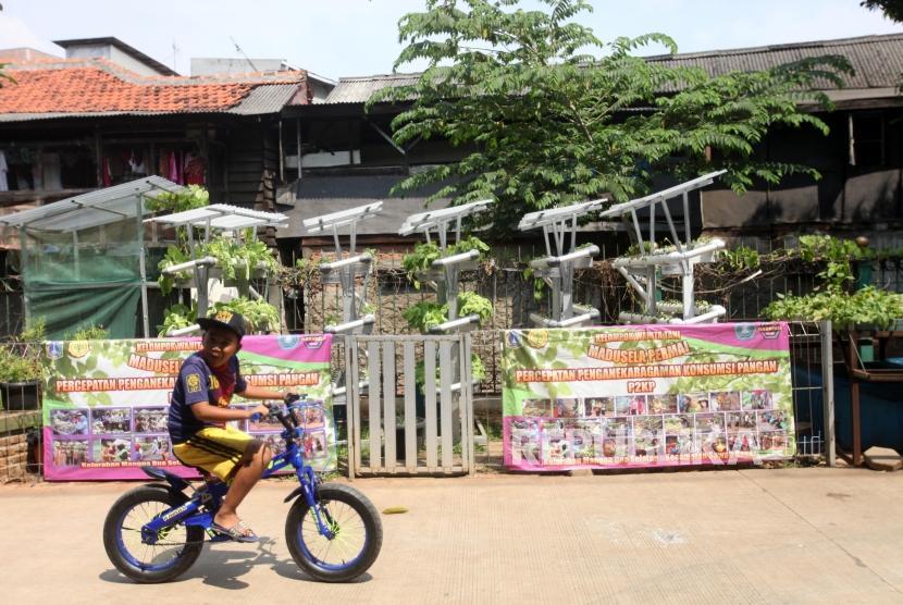 Seorang anak bermain sepeda disamping taman hidroponik di ruang publik terpadu ramah anak (RPTRA) dibawah rel kereta api Mangga Besar, Jakarta, Senin (14/5).
