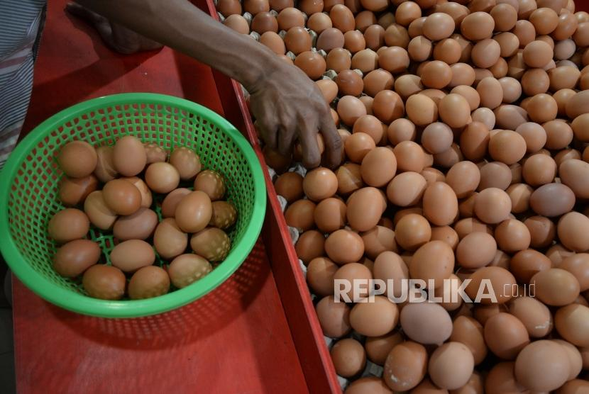 Egg price reached up to 27,000 IDR per kilogram