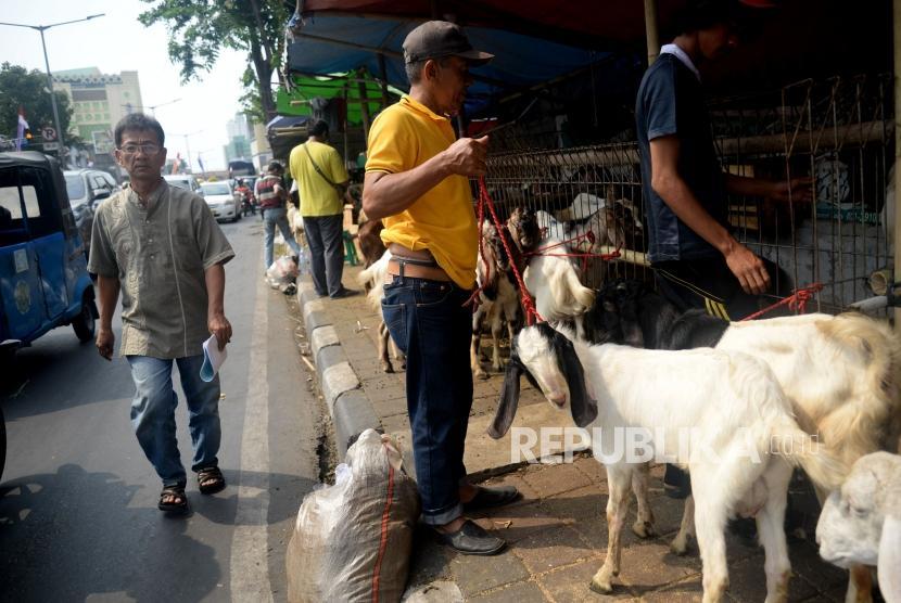 Pedagang menjual hewan kurban dengan memanfaatkan trotoar Jl KH Mas Mansyur, Tanah Abang, Jakarta, Jumat (9/8).